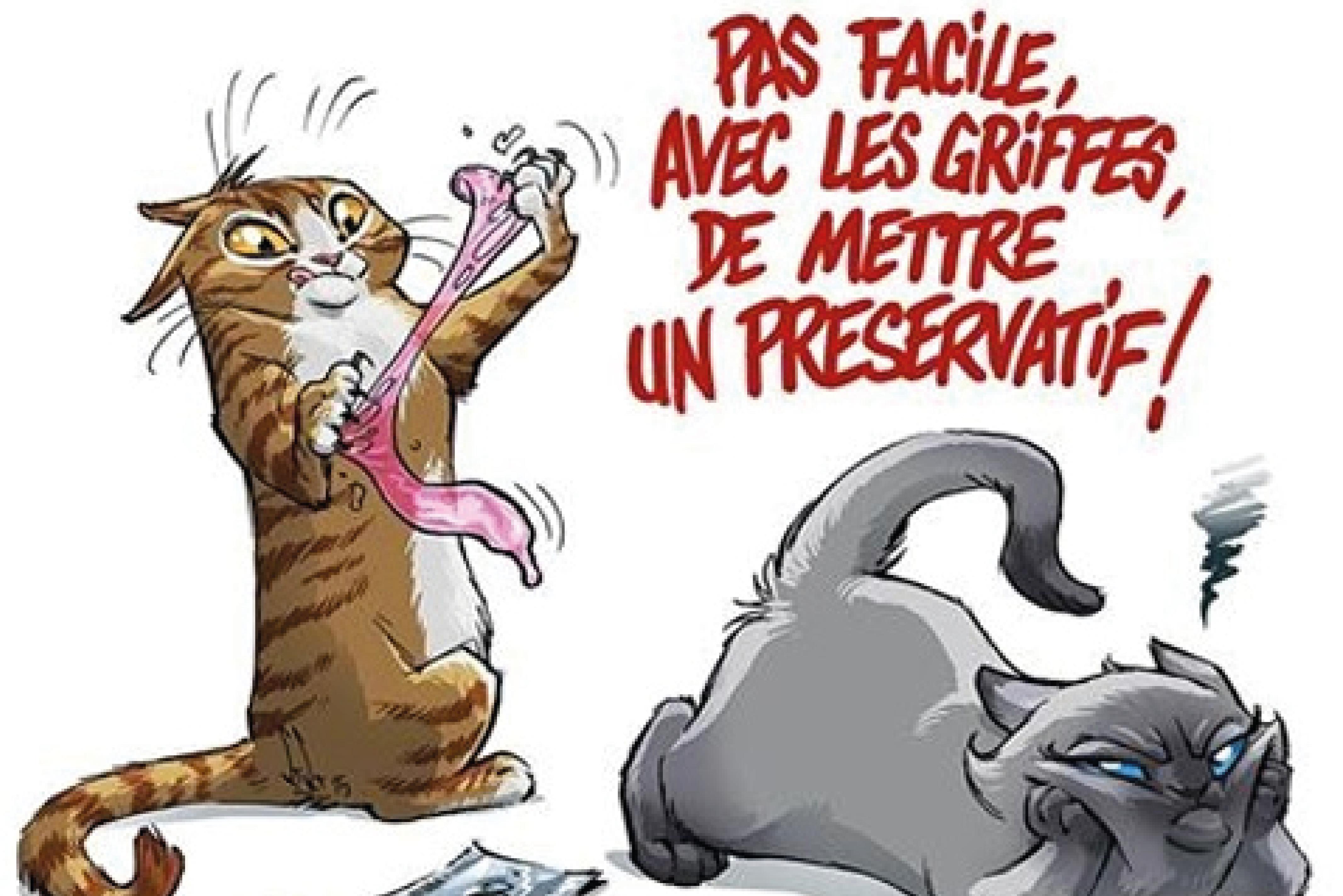 Vétérinaire Châteaurenard Clinique du Barret